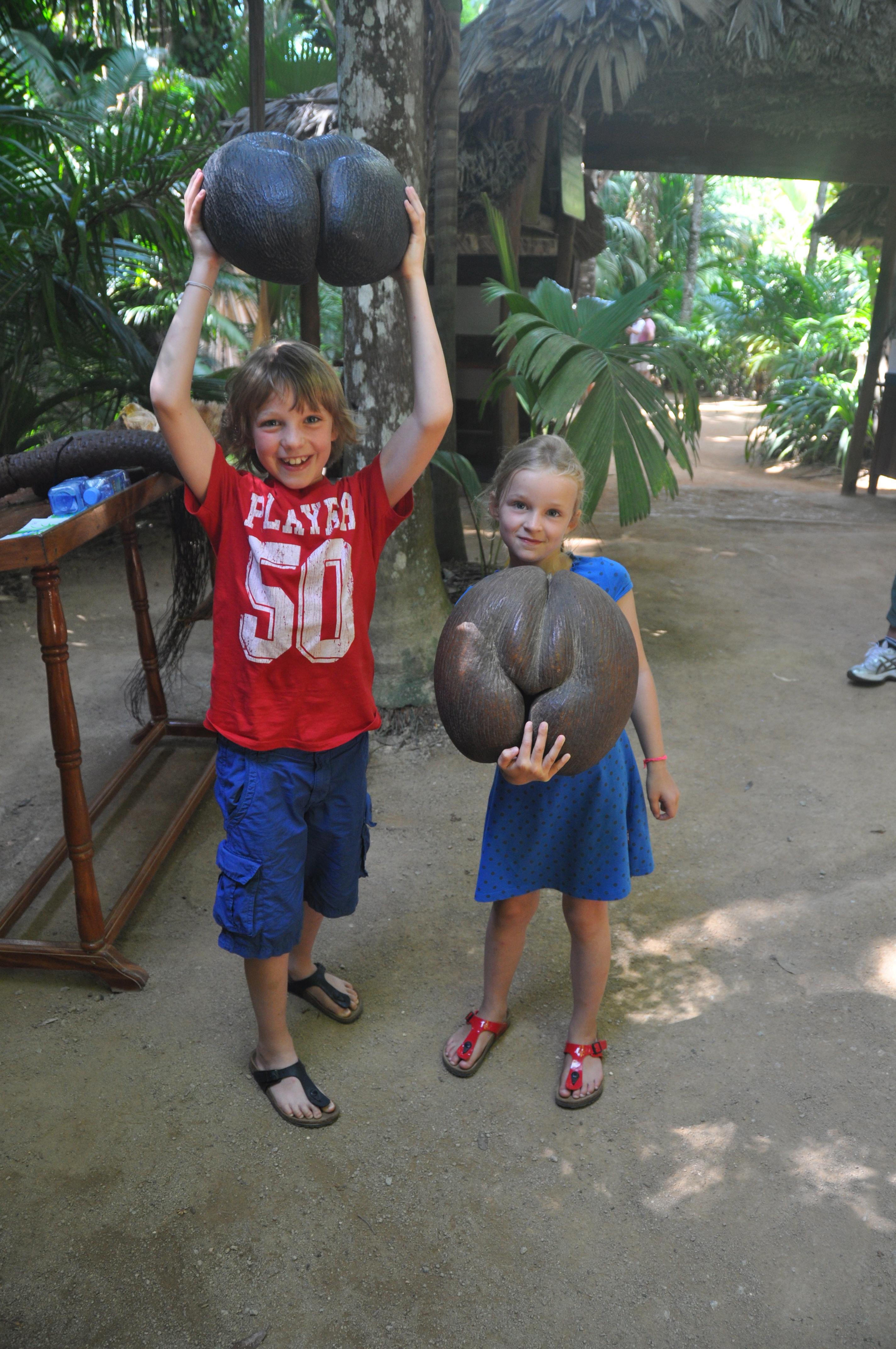 kinderen_met_kokosnoten_Seychellen