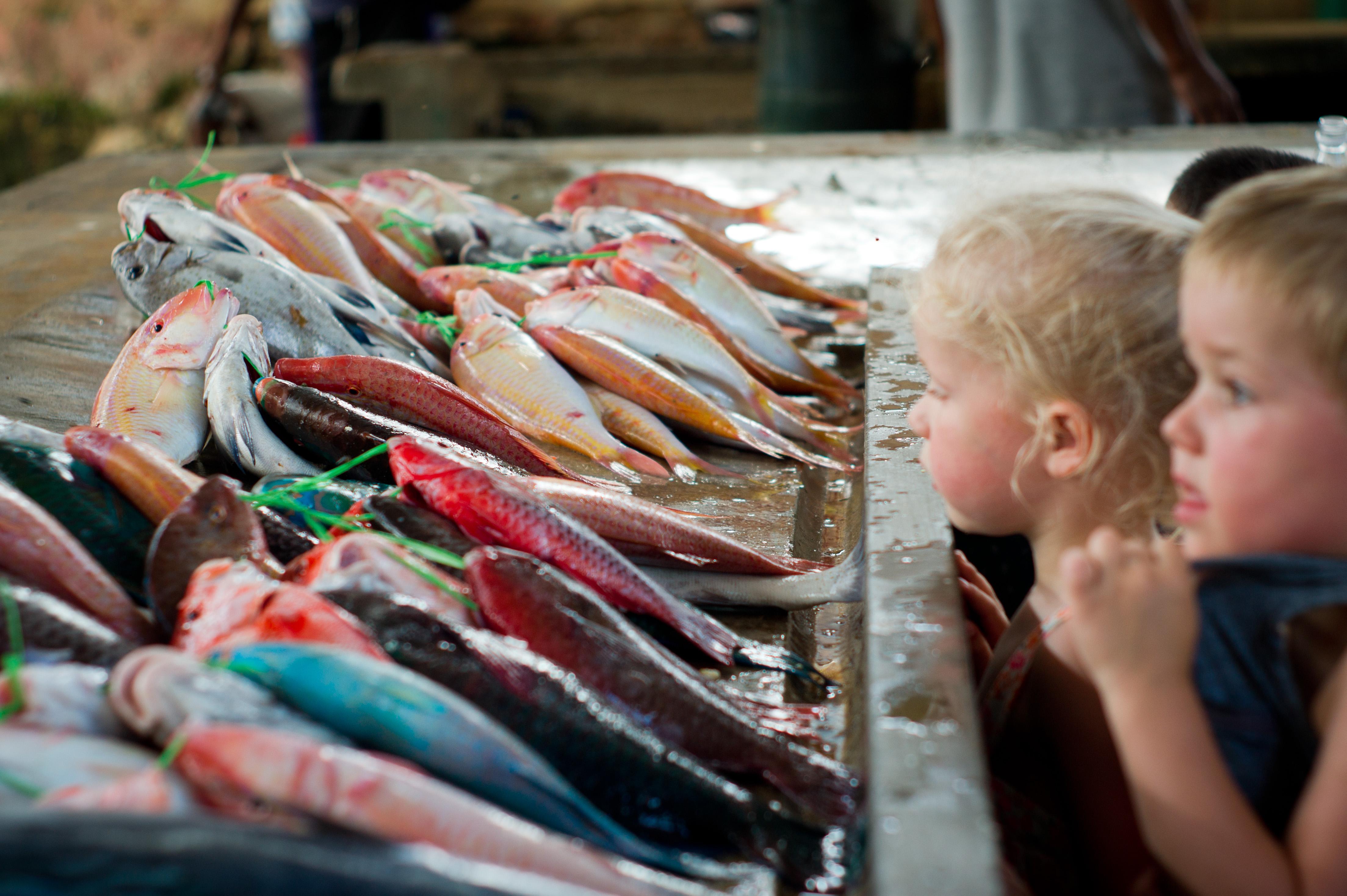 kinderen_op_markt_Seychellen